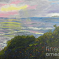 Rays Of Light At Burliegh Heads by Pamela  Meredith