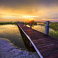 Reaching Into Sunset by Debra and Dave Vanderlaan