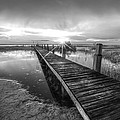 Reaching Into Sunset In Black And White by Debra and Dave Vanderlaan