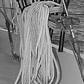 Ready For Sailing by Jill Kelley