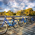 Ready To Ride by Debra and Dave Vanderlaan