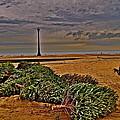 Rebuilding The Dunes by Joe  Burns