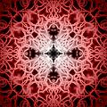 Red by Adam Romanowicz
