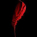 Red And Black - Duvet by Nikolyn McDonald