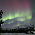 Red And Green Aurora Borealis by Joseph Bradley