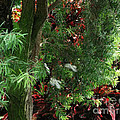 Red And Green Foliage by Luther Fine Art