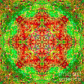 Red And Green Sun Mandala by Susan Bloom