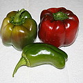 Red And Green Peppers by Lorenzo Woodard