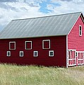 Red And White Barn by Nelson Skinner