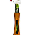 Red And White Spray Carnations In Teak Vase by Steven Heap