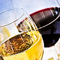 Red And White Wine by Elena Elisseeva