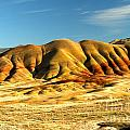 Red And Yellow Painted Hills by Adam Jewell