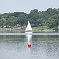 Red Ball Sailing by Donna Wilson