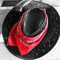 Red Bandana And Cowboy Hat by Dan Sproul