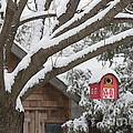 Red Barn Birdhouse On Tree In Winter by Elena Elisseeva