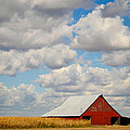 Red Barn In Autumn by Aaron Greuel