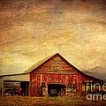 Red Barn  by Joan McCool