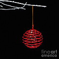 Red Bauble by Diane Macdonald