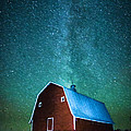 Red Beauty's Milky Way by Lori Dobbs