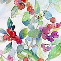 Red Berries by Linda Haile
