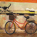 Red Bicycle And Cat by Susan Powell