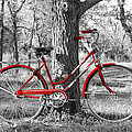 Red Bicycle by James Granberry