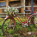 Red Bicycle by John Anderson