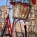 Red Bicycle by Sunel De Lange