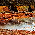 Red Boat At Low Tide Triptych by Barbara Griffin