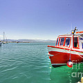 Red Boat At Nafplion Harbour by Rob Hawkins