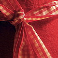 Red Bow by Brainwave Pictures