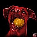 Red Boxer Mix Dog Art - 8173 - Bb by James Ahn