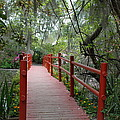 Red Bridge by Brian OSullivan