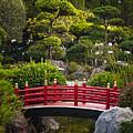 Red Bridge In Japanese Garden by Elena Elisseeva