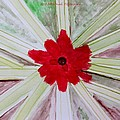 Red Brilliance by Sonali Gangane