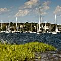 Red Brook Harbor by Dennis Coates