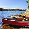 Red Canoe On Shore by Elena Elisseeva