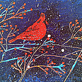 Red Cardinal Bird On Branch Painting Fine Art Print by Laura Carter