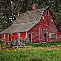 Red Country Barn by Image Takers Photography LLC - Laura Morgan