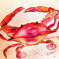 Red Crab  by Nancy Patterson