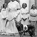 Red Cross Parade, 1920 by Granger