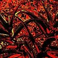 Red Dancers by John Le Brasseur