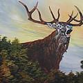 Red Deer - Stag by Jean Walker