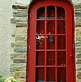 Red Door In Baltimore by Linda Covino