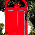 Red Door by Mariola Bitner