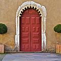 Red Door Of Caldas De Rainha by David Letts