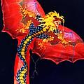 Red Dragon Kite by Susan Savad