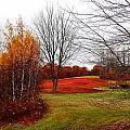 Red Field Autumn by Expressionistart studio Priscilla Batzell