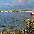 Red Fishing Boat In Twillingate Harbour-nl by Ruth Hager