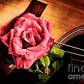 Red Flower Rose Bloom On Guitar Painting In Color 3264.02 by M K Miller